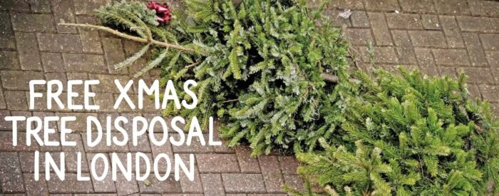 how to dispose of a christmas tree for free in london