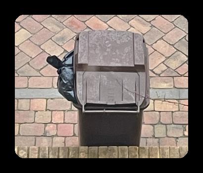 bin full of waste for disposal