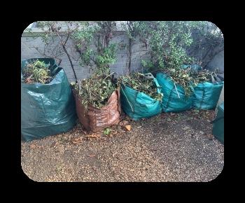 garden waste £40