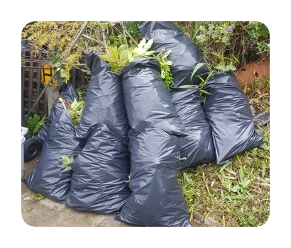 garden waste cuttings and clearance
