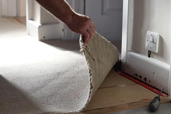 man uplifting carpet